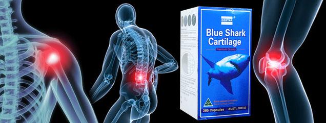 Sụn Vi Cá Mập Blue Shark Cartilage 750mg tái tạo sụn